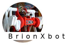 brionXbot